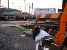 結構早くから電車走ってますねんな。