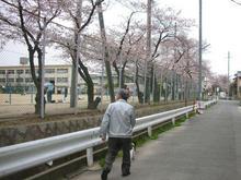 朝より咲いとるがなっ。