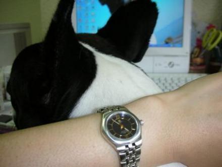 はい、時計にちゅうも〜くっ!